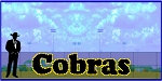 5' x 20' Cobras Letters - 2 Colors